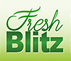 logo-FRESH-BLITZ-mini